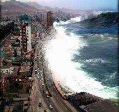 Tsunami Seen from a High-Rise